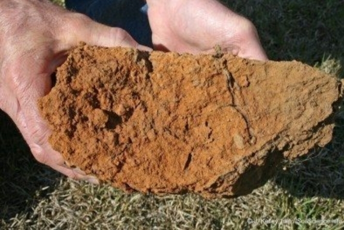 Does your soil look like this?
